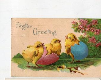 vintage Easter Postcard, chicks with shells on rears, antique postcard vintage postcard, SharonFosterVintage