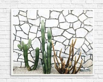 California Photography, Cactus Photography, Palm Springs Photography, Cactus Garden, Cactus, Green, Home Decor, Desert Photo - Cactus Love 3