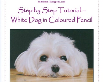 Step by Step Tutorial - How to draw a White Dog in Coloured Pencil