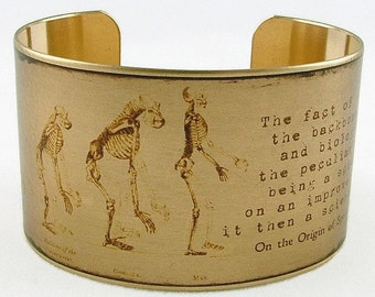 Natural History Bracelet - Evolution Of Man - Charles Darwin - Science Gift - On The Origin Of Species - Literature Jewelry - Brass Cuff