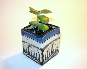 Box Planter – succulent planter – blue ceramic pot – indoor garden – table planter – utensil holder – plant cuttings
