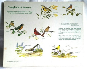 12 Vintage Songbirds of America Note Card with Envelopes