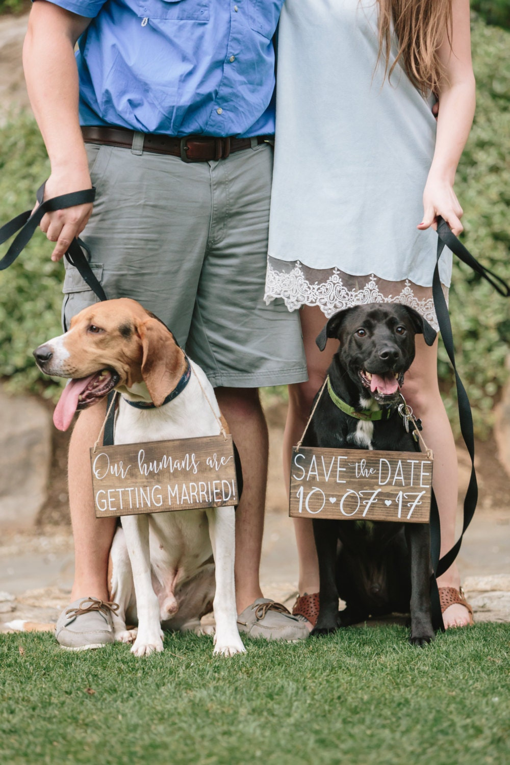 Pet Save The Date Sign Dog Photo Prop Sign Calligraphy