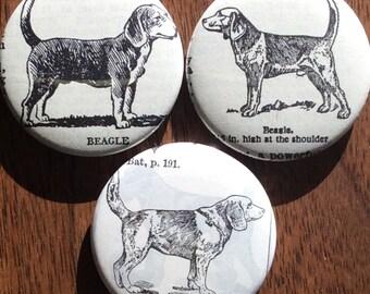 Beagle Vintage Dictionary Magnet Set of 3