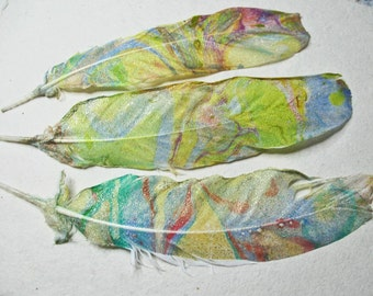 """3 Shimmering  Marbled Parrot Cockatoo Feathers, 7"""", Yellows, Blues, Touch of Green, Exquisite Gold Shimmer, Feather Supply,Milliner"""