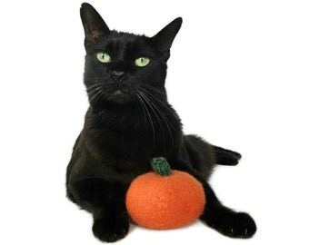 Organic Catnip Toy Halloween Harvest Pumpkin Orange Wool Hand Knitted Premium Felted Large For Cats Pets