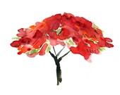 Like Fire  art print, Poinciana tree print, watercolor print, Tangerine, modern art, tree print, Red, Green, Black, Poinciana bloom, nature