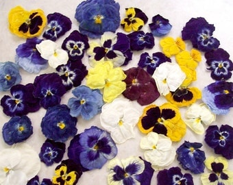 Dry Pansies, Dry Flowers, Centerpiece, Flower Girl, Favor, Wedding Decoration, Pot Pourri, Petals, Violas, Craft Supplies, 100 Real Pansies
