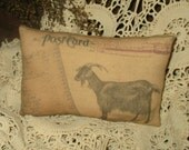 Primitive Goat pillow