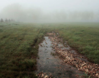 "Fine Art Landscape Photograph ""Foggy Iowa Morning"" Wall Art, Home Decor. 8x10, 11x14, 16x20, 20x24, 24x30, 24x36, 30x40"