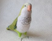 Mr. Green Faced Quaker Parrot, needle felted bird sculpture