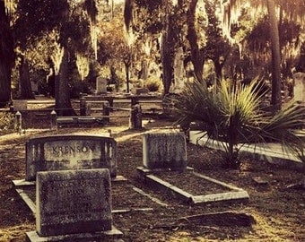"Cemetery Series ""The Graves No. 1"" Unframed Photography Giclée Print. ChyaCyn productions. Savannah GA. Art Wall Photo Spanish Moss trees"