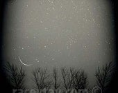 Black and White Nature Photography, Winter Tree, Crescent Moon, Stars, Night Sky, Pagan, Lunar