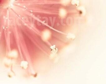 Flower Photography, Pastel Wall Art, Girl Nursery Decor, Peach, Pink, Yellow, Bedroom Wall Art, Modern, Abstract