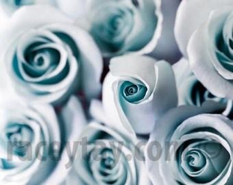 Blue Roses, Flower Photography, Pastel, Paris Print, Blue Wall Art, Paris Roses, Pastel Flowers