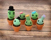 Amigurumi Cactus - Crocheted Cacti in Clay Pots - Gift Idea - Office Decor - Teacher Gift - Geeky Gifts - Crochet Cactus Doll