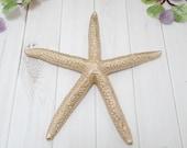 Gold Painted Starfish - Beach Decor - Starfish Decor - Bowl Filler - Coastal Decor