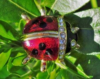 Vintage - Stunning - Enamel - Ladybird - Ladybug - Brooch Pin