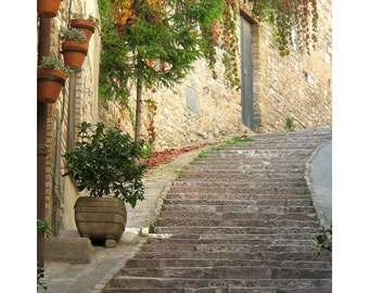 """Fine Art Color Travel Photography of Assisi Italy - """"Red Ivy and Steps in Assisi"""""""