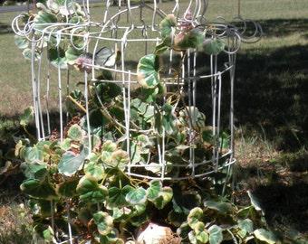 Wire bird cage White