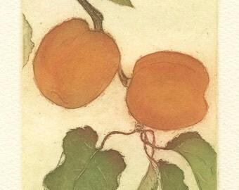 Apricots, Original Fine Art Etching
