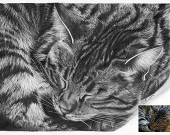 Custom Pet Portrait A5 Personalised Hand drawn Illustration - Paint the Moment