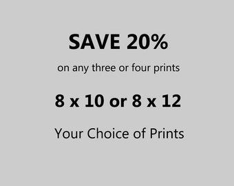 Any Three or Four 8 x 10 or 8 x 12 Photographs – 20 Per Cent Discount – Your Choice of Prints