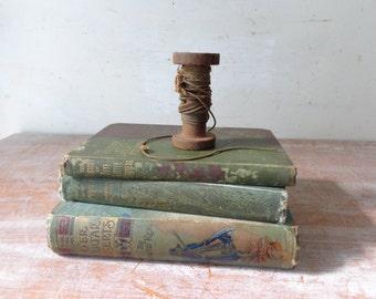 Trio of Antique Books
