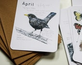 Wild Months Postcards (Set of 12)