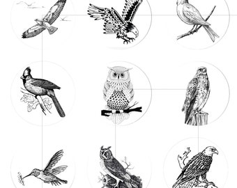 """Printable Downloads, Bird, Black and White, Digital Collage Sheet, For Pendant, Bottle Caps, 1.5"""", 1.25"""", 1"""", Circles, dcc039"""