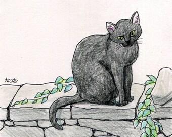 Cat original drawing - P002July2016