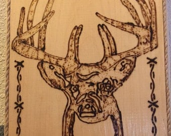 For the Hunter in your life/buck picture, deer hunting