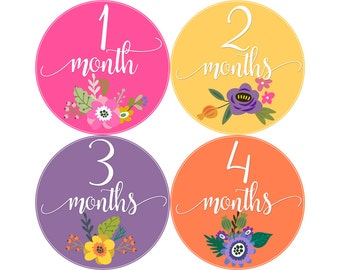 Baby Month Stickers, Monthly Baby Stickers, Monthly Photo Stickers, Girls First Year Photo Props, Baby Shower Gift, Flowers Bouquet (G248)