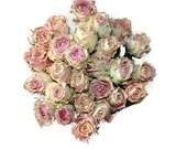 25 Dried Roses - Natural Color - pink roses - Roses for Weddings, Luck-Love-Romance and all other Matters of the Heart - Flower Bouquet