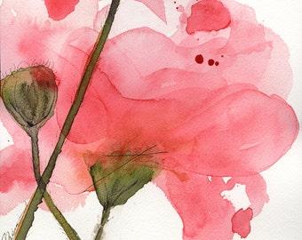 Modern Botanical Art Print,  Coral Poppy, Floral Art Print, Large Archival Botanical Art