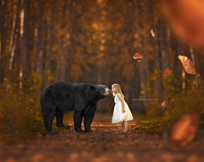 Fall Black Bear Digital Background and Overlays - Black Bear Overlay, Fall Digital Background, Falling Leaves Overlay