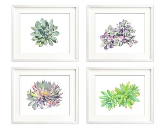 Succulent print set of 4, 5 by 7 size botanical art, succulent watercolor painting, nature, living room wall art, contemporary prints