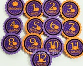 Halloween Photo Tag Banner Birthday Decorations with Pumpkins and Stars in Purple Orange and Black First Birthday