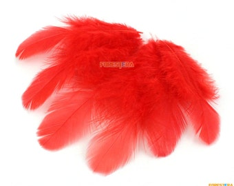 100 Pieces Red Feather 4-9cm (YM208)
