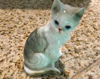 bone china gray cat kitten sitting pretty