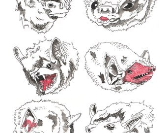 Bat Buds - 8x10 Giclee Fine Art Print