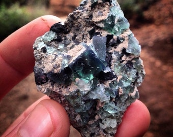 Rogerley mine uv reactive fluorite with galena