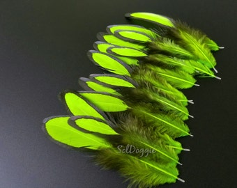 Bright Lime Green Feathers, Craft Feathers