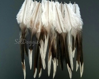 White and Grey Feathers for Crafts or Hair, Cream Splash, Qty12
