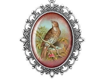 Songthrush Vintage Springwatch Song Bird Handmade Victorian Cameo Bronze or Silver Large or Small Necklace Jewellery