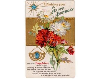 Sapphire Birthstone Postcard, Vintage 1910s September Birthday Post Card, Red Aster, White Aster Flower, Embossed Post Card