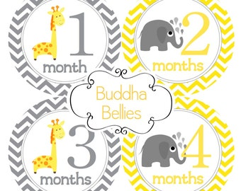 Neutral Month Baby Stickers Giraffe and Elephants Month Decals Bodysuit Stickers Giraffes Elephant Nursery Baby Shower Gift