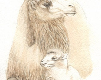 Camels, Original watercolor painting, 5x7, dromedary, art & collectibles, painting  earthspalette