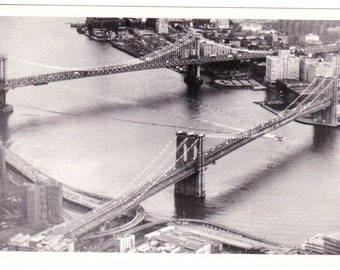 Vintage Postcard From Photo Chronicles LTD Depicting The Two Brides At The East River New York 1995 Photographed By Rolan Fajardo