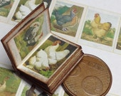 1:12 Miniature Poultry book